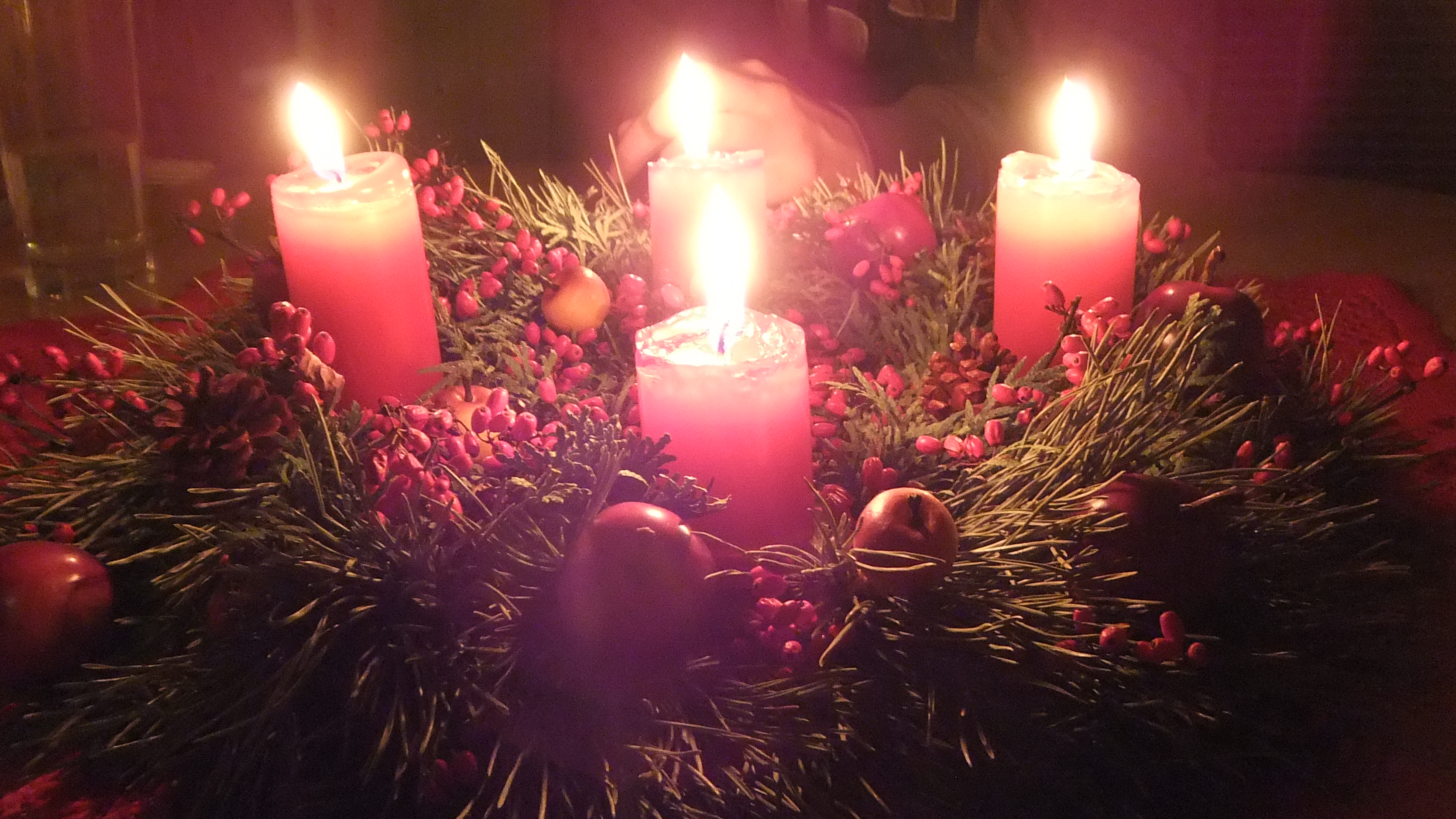 Jeden z dvoch vencov vyrábaných pre potreby Vianoc 2013. Je kombináciou borovice a tuje v prírodnom štýle. Šišky a jabĺčka sú síce umelé, červené bobule však živé. Detail tohto venca je použitý ako titulný obrázok sekcie.