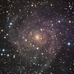 IC342_Zirafa