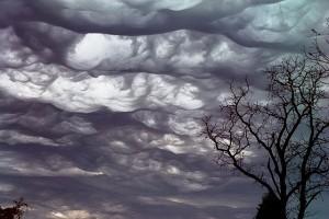 Oblak typu asperatus