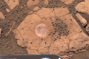 Detailný obrázok plochého kameňa s množstvom drobných guľových zrniek. Táto oblasť bola nazvaná Berry Bowl (angl. misa s čučoriedkami)